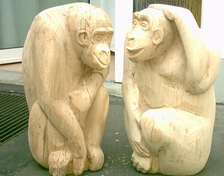 2010 Chimpansen - privat